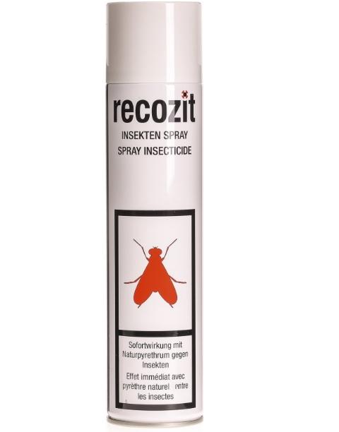 rabatt auf recozit insekten pyrethrum spray online shop drogerie schilliger. Black Bedroom Furniture Sets. Home Design Ideas